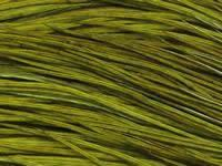 Whiting Hackle Dark Olive